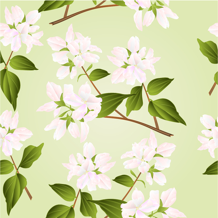 shrub: Seamless texture branches decorative shrub with white flowers nature background vector illustration