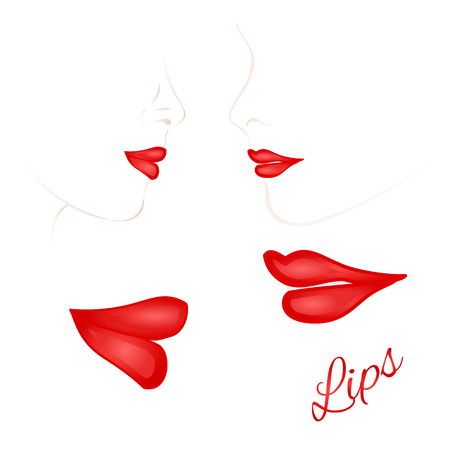 Females red lips with the contour face second set vector illustration