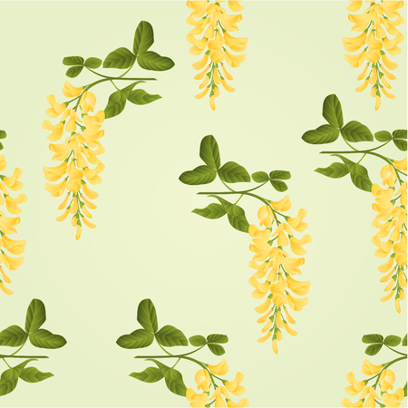 shrub: Seamless texture Laburnum branch decorative shrub nature background vector illustration