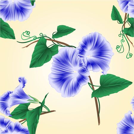 ipomoea: Seamless texture Morning glory  blue spring flower vintage vector illustration