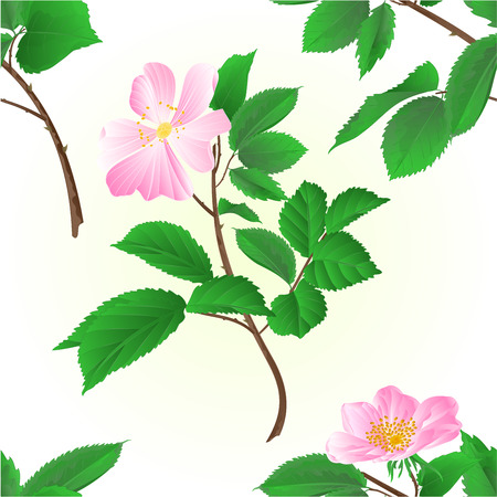 pink bushes: Seamless texture twig wild roses illustration