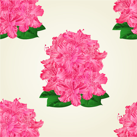 shrub: Seamless texture rhododendrons  pink  flowers Mountain shrub vector illustration