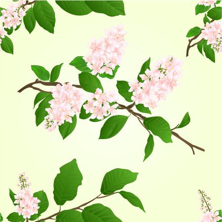 Nahtlose Textur rosa Lila Zweig natürlichen Hintergrund Vektor-Illustration