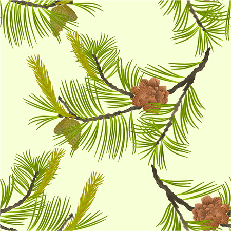 Seamless texture blooming pine tree and pine cones branch natural background vector illustration