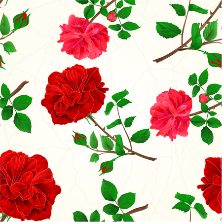 centifolia: Seamless texture red roses cracks in the porcelain seamless texture vintage vector illustration.