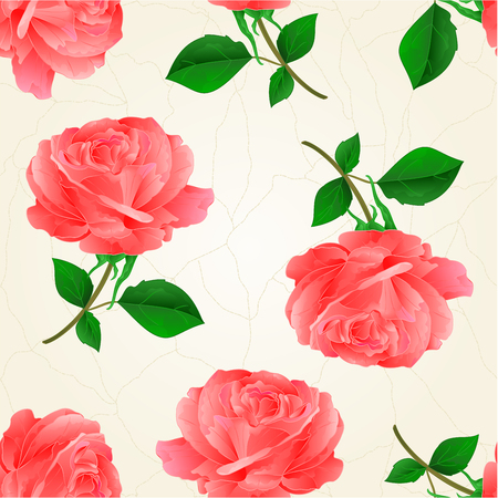 centifolia: Seamless texture flower pink rose twig with leaves crack vintage hand draw vector illustration