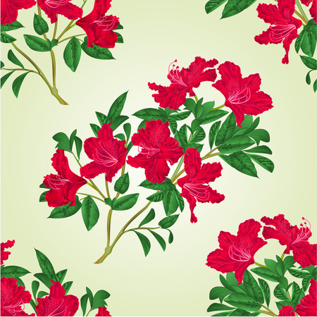 A Seamless texture red rhododendron twig with flowers and leaves mountain shrub vintage  vector botanical illustration hand draw.
