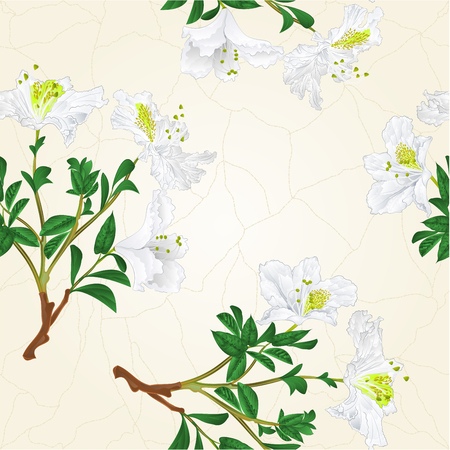 azalea: A Seamless texture White rhododendron branch mountain shrub vintage vector botanical illustration hand draw. Illustration