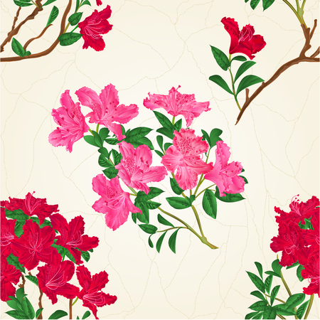 Seamless texture red rhododendron branch mountain shrub vintage vector botanical illustration hand draw