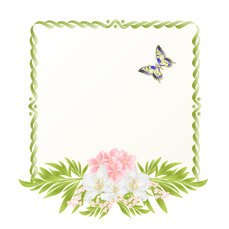 Frame  cherry blossom and jasmine with butterflies vintage  festive  background vector illustration editable hand draw