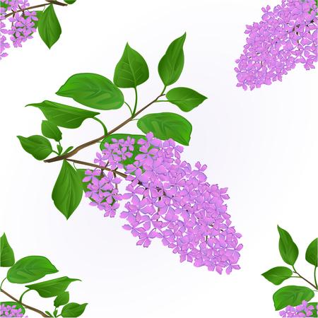 Nahtlose Beschaffenheit des lila Zweigs mit Blumen und natürlicher Hintergrund der Blattweinlese.