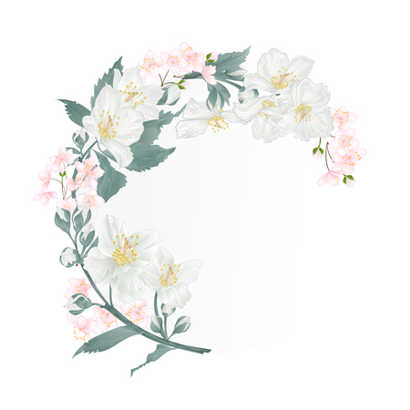 Floral round  frame with  Jasmine and buds  vintage festive  background vector illustration editable hand draw
