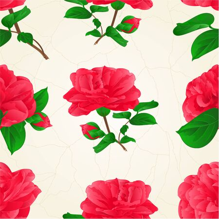 Seamless texture three Flowers Camellia Japonica  with buds vintage  crack vector illustration editable hand draw