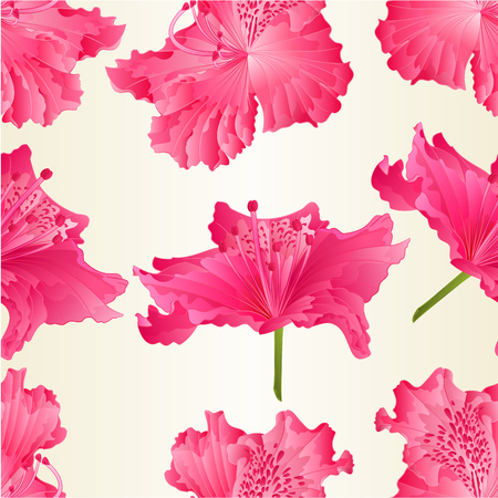 paper background: Seamless texture of beautiful pink flowers