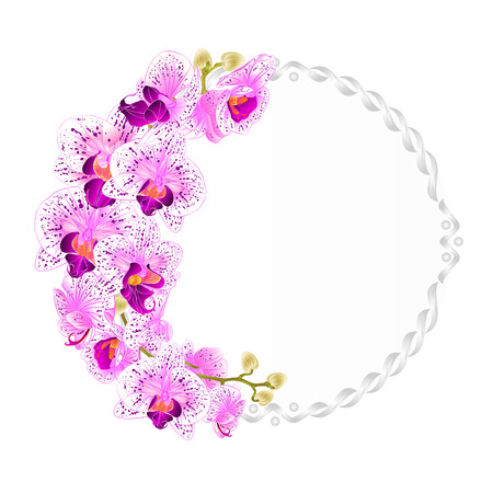 chic: Floral vector round  frame with orchids purple and white flowers tropical plants Phalaenopsis vintage  festive  background vector illustration hand draw editable