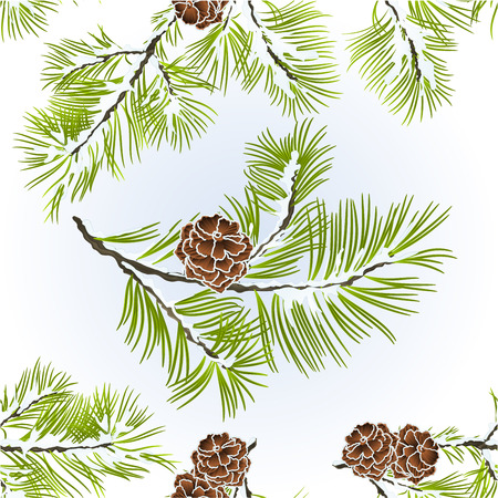Seamless texture conifer Branches Pine  with pine cones  winter snowy natural background vector illustration editable hand draw