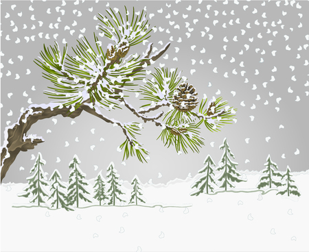 Winter landscape pine branches and cones needles and snow nature background vintage vector botanical illustration for design editable hand draw