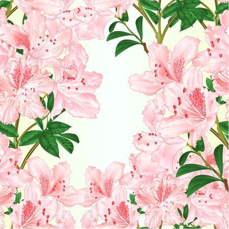 Seamless texture light pink rhododendron branch mountain shrub vintage vector illustration editable hand draw Illustration