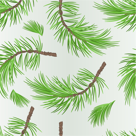 Seamless texture branch pine tree botanical background vintage vector illustration editable hand drawing