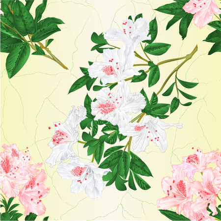 Seamless texture branch light pink and white flowers rhododendron mountain shrub vintage vector illustration editable hand draw Ilustração