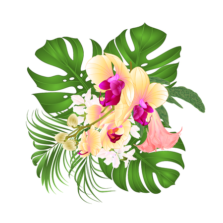 Bouquet with tropical flowers floral arrangement, beautiful yellow orchid, palm, philodendron, and Brugmansia vector illustration
