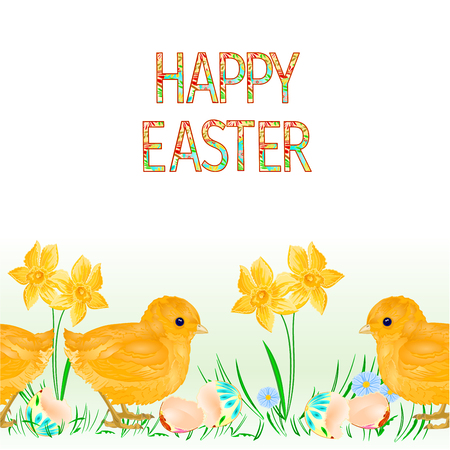 Easter egg with easter egg and daffodil vector Illustration