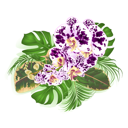 Bouquet with tropical flowers orchid spilled Phalenopsis floral arrangement, with beautiful palm, philodendron and ficus