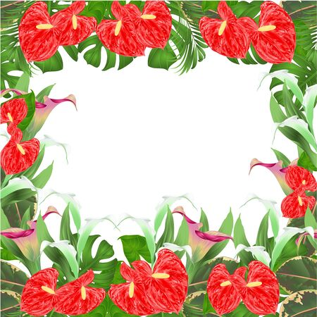 Floral border with blooming lilies Cala and anthurium, palm, philodendron and ficus vector Illustration for use in interior design greeting cards