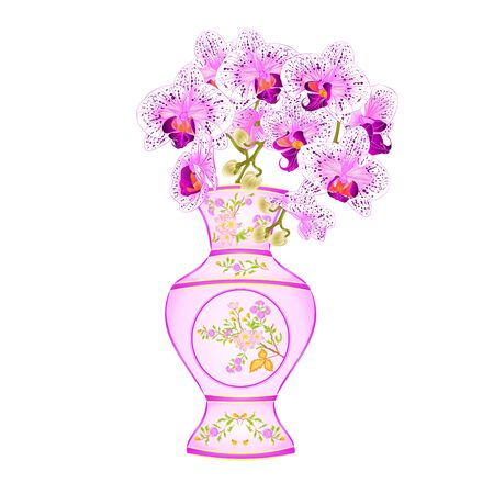 Orchid phalenopsis white and purple in a vase of porcelain with flowers and  leaves  vintage vector illustration editable hand draw