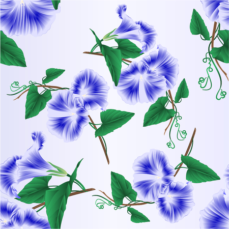 Seamless texture Morning glory  blue spring flower vintage vector illustration editable hand draw Иллюстрация