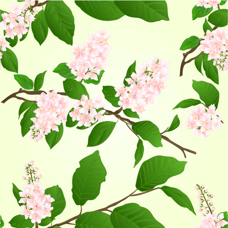Seamless texture pink Lilac branch natural background vintage vector illustration   editable hand draw Illustration