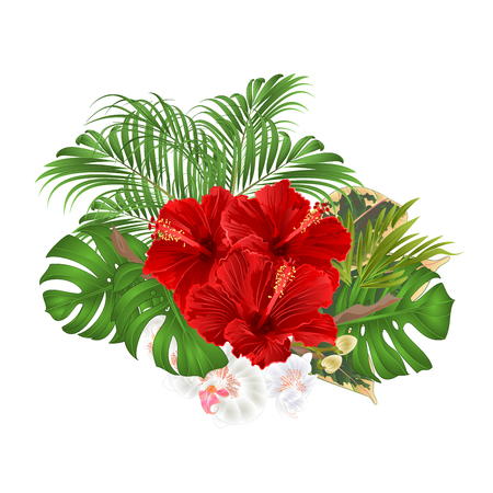 Bouquet with tropical flowers  floral arrangement, with beautiful red hibiscus and white orchid palm,philodendron  vintage vector illustration  editable hand draw