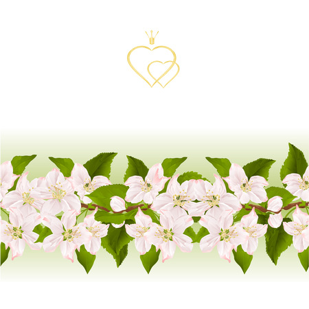 Floral border seamless background with blooming apple tree with flowers stock photography vintage vector illustration