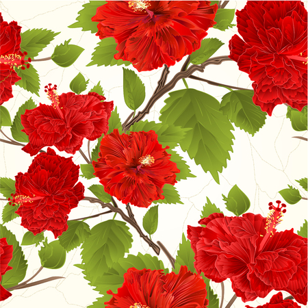Seamless texture branch red hibiscus tropical flowers crack vintage vector illustration editable hand drawing Illustration