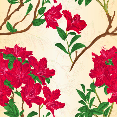 Seamless texture red rhododendron branch mountain shrub vintage vector illustration.