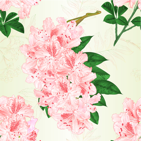 Seamless texture flowers Light pink rhododendrons twigs shrub vintage vector illustration editable hand draw