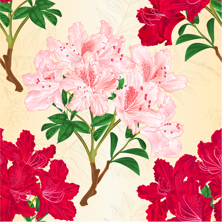 Seamless texture red and pink rhododendrons branches mountain shrub vintage vector botanical illustration editable hand draw