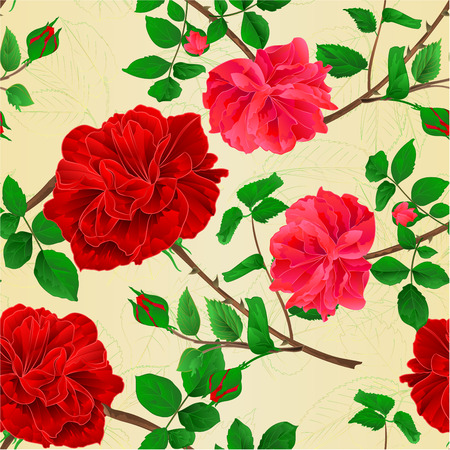 Seamless texture stems flower red and pink roses and leaves vintage  vector botanical illustration editable hand draw Ilustrace