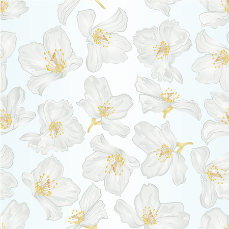 Seamless texture jasmine flowers with twigs  vintage  vector botanical illustration editable hand draw