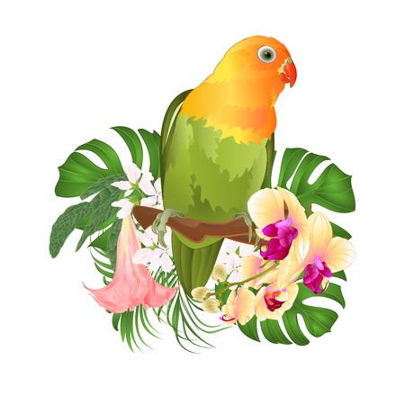 Parrot Agapornis lovebird tropical bird standing on a branch and Brugmansia with yellow orchid on a white background vector illustration editable hand draw Vetores
