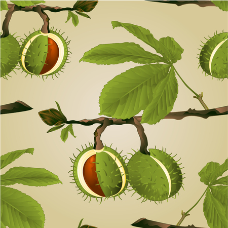 Seamless texture Chestnut tree conkers with leaves vintage fall background vector editable hand draw illustration