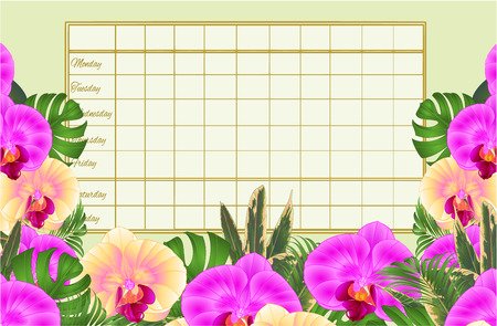 Timetable weekly schedule  with tropical flowers  beautiful yellow and purple orchids, palm,philodendron  vintage vector illustration  editable hand draw