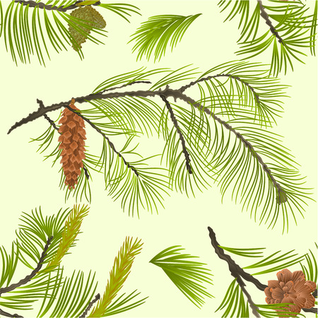Seamless texture White Pine branch with pine cone and flowering black pine vintage  vector Illustration editable hand draw