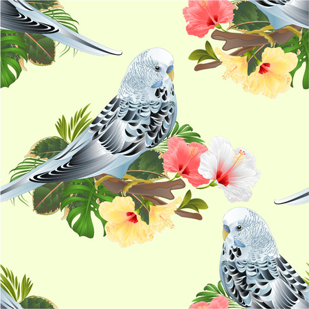 Seamless texture Budgerigar, home pet ,blue pet parakeet  on a branch bouquet with tropical flowers hibiscus, palm,philodendron  vintage vector illustration editable hand draw Standard-Bild - 109852240