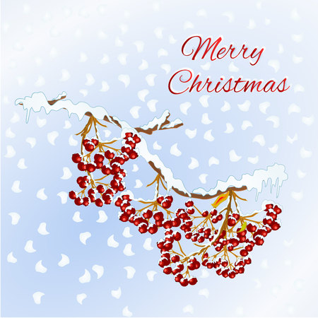 Merry christmas lettering  new year holiday celebration design with rowan red berries on branch covered with snow seasonal sale advertising element vintage vector illustration editable hand draw