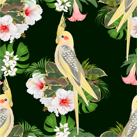 Seamless texture Yellow cockatiel cute tropical bird funny  parrot and white hibiscus watercolor style on a green background vintage vector illustration editable hand draw