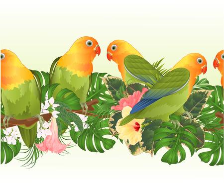Tropische grens naadloze achtergrond papegaaien Agapornis dwergpapegaaien tropische vogels permanent op een tak en Brugmansia met roze en gele hibiscus op een witte achtergrond vectorillustratie bewerkbare hand tekenen