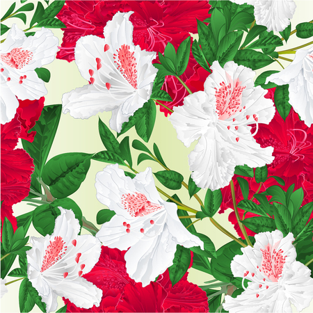 Seamless texture flowers red and white rhododendrons twigs natural background  vintage vector illustration editable hand draw
