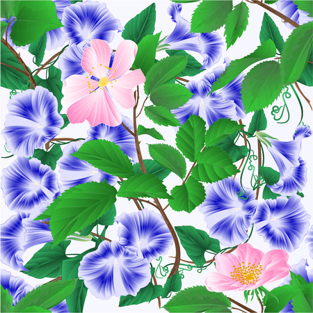 Seamless texture Morning glory  blue spring flowers and twigs wild roses vintage vector illustration editable hand draw