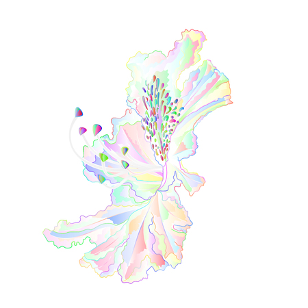 Varicolored light flower rhododendron mountain shrub on a white background vintage vector illustration editable hand draw